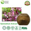 Naturls high quality Epimedium Extract