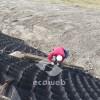 Ecoweb, Geocell, Geosynthetics, Geoweb